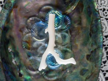 珊瑚パーツ